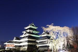 夜桜 380